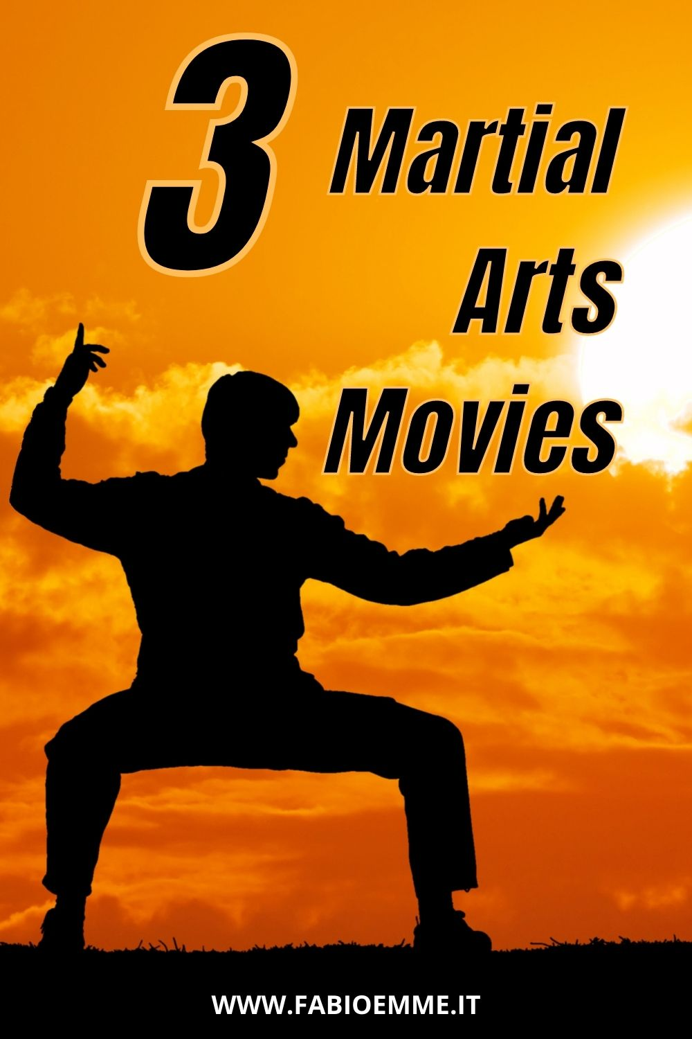 Looking for some good combat and also a smart movie to watch? 3 Martial Arts Movies you may have missed over the years. #MOVIES